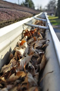 gutter-with-leaves-original